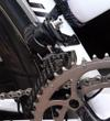 Campy_erecord_fd_side_view